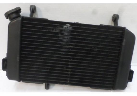 Radiateur (1) SV 650 N/S