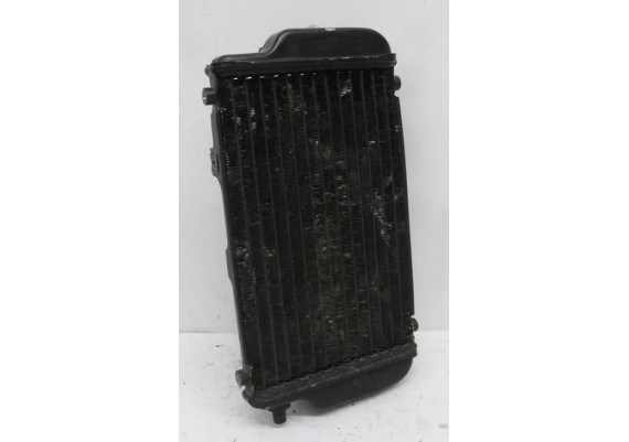Radiateur incl. ventilator EL 250