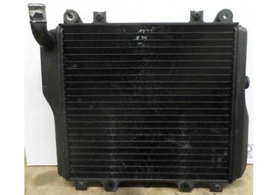 Radiateur (2) ZX10