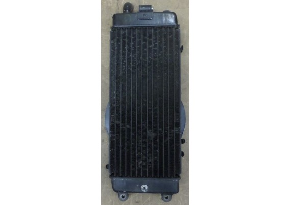 Radiateur (2) VT 800 C