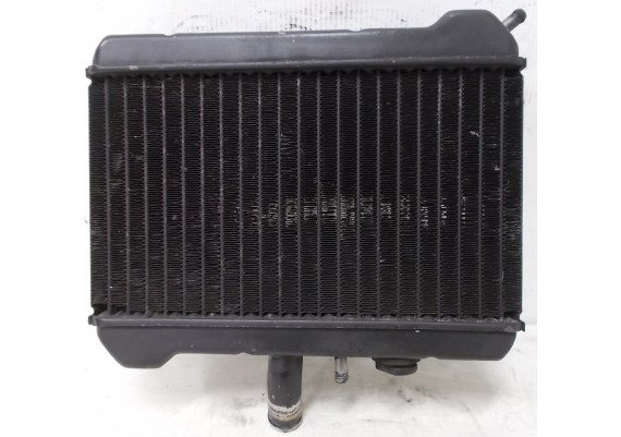 Radiateur (1) GL 1500