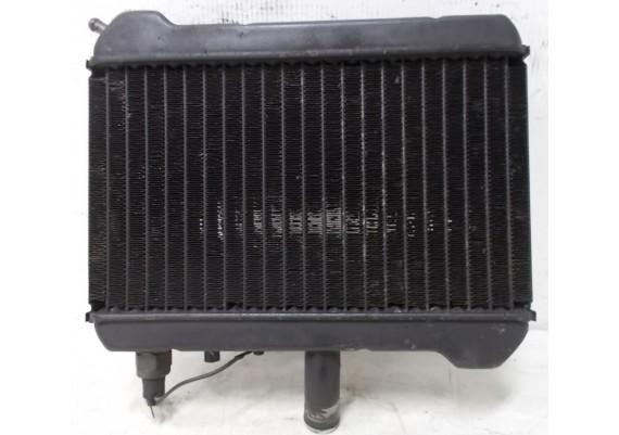 Radiateur (2) GL 1500