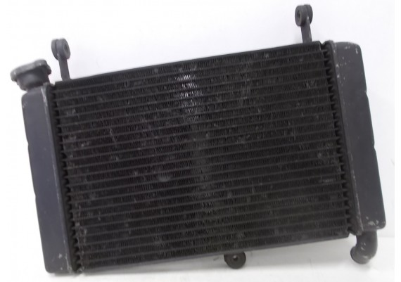 Radiateur (1) YZF 600 R