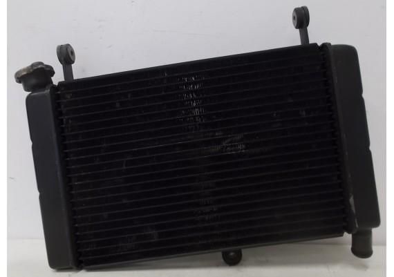 Radiateur (1) FZR 600 R