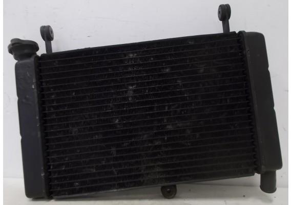 Radiateur (2) FZR 600 R