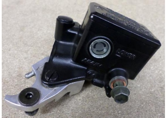 Rempomp voor FZS 600 2000