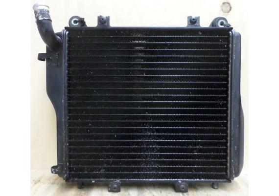 Radiateur GTR 1000